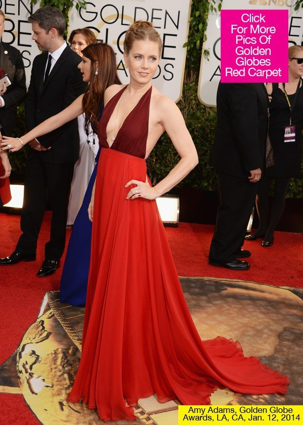 Top 5 Golden Girls at the Golden Globes Ceremony 2014 - Amy Adams